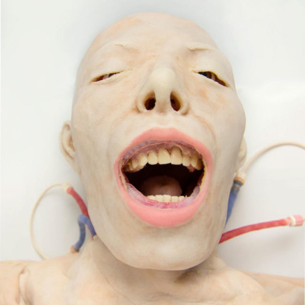 Modelo Quirúrgico